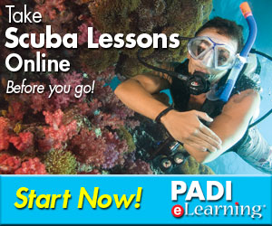 General eLearning Static Banner 2
